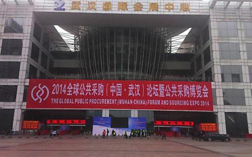 龙腾盛世在武汉国际会展中心参展